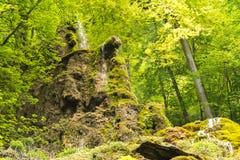 Uracher Wasserfälle, плохое Urach, Германия Стоковое Фото