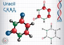 Uracil  U - pyrimidine  nucleobase in the nucleic acid of RNA. Royalty Free Stock Photos