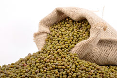 Urad dal Stock Photos