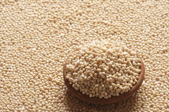 Urad Dal - A lentil commonly used in Indian recipes. Urad Dal - Urad, also referred to as urad dal, udad dal, urd bean, urd, urid, black matpe bean, black gram Stock Photo