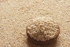 Urad Dal - uma lentilha de uso geral em receitas indianas Foto de Stock