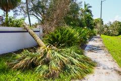 Uragano Irma Damage Fotografia Stock