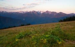 Uragano leggero Ridge delle montagne olimpiche di primo mattino fotografie stock libere da diritti