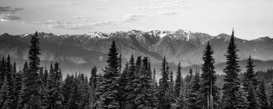 Uragano leggero Ridge delle montagne olimpiche di primo mattino fotografia stock libera da diritti