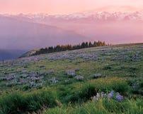 Uragano Ridge Fotografia Stock