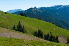 Uragano Ridge Hills Immagini Stock Libere da Diritti