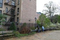 Uragano Sandy Fotografia Stock