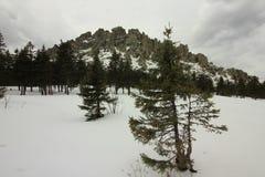 ural的山 国家公园Taganay 土坎Otkliknoi 1155 m 图库摄影