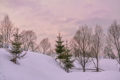 ural χειμώνας ηλιοβασιλέματος βουνών s βραδιού Δέντρα σε έναν χιονισμένο λόφο, ένας ευγενής ρόδινος ουρανός Στοκ εικόνα με δικαίωμα ελεύθερης χρήσης