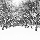 ural χειμώνας ηλιοβασιλέματος βουνών s βραδιού Στοκ Εικόνες