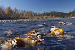 Urals autumn Royalty Free Stock Image