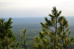 Ural-Berg bedeckt Beobachtungsansicht mit einer Kappe Lizenzfreie Stockfotografie