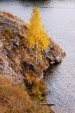 Ural höst Fotografering för Bildbyråer