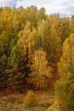 Ural höst Royaltyfri Bild