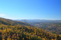 Ural mountain forest in golden fall Royalty Free Stock Photography