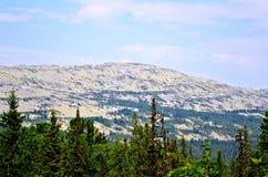 Ural mountain range Kvarkush_1 Royalty Free Stock Images