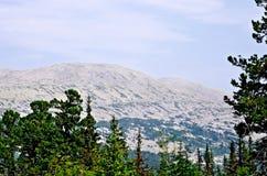 Ural mountain range Kvarkush_2 Stock Image