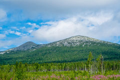 Ural mountains Royalty Free Stock Images