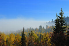 Ural Mountains. Morning fog in the Ural Mountains Royalty Free Stock Photos
