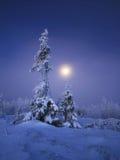 Ural nordico Fotografia Stock