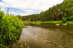 The Ural river in wood Stock Photography