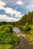The Ural river in wood Royalty Free Stock Photos