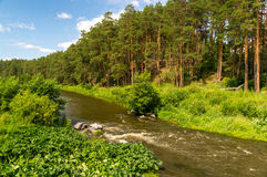 The Ural river in wood Royalty Free Stock Image