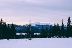 Ural-Winter-Berge Landschaft und Sonnenlicht Lizenzfreies Stockbild