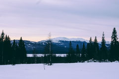 Ural Winter Mountains Landscape and Sunlight Royalty Free Stock Image
