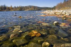 Urals autumn Royalty Free Stock Photos