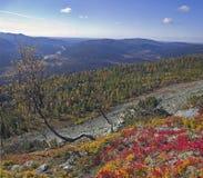 Urals jesień Zdjęcie Royalty Free