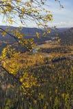 Urals jesień Zdjęcia Stock