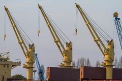 Żurawie na doku Fotografia Royalty Free