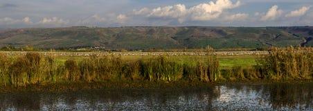 Żurawie przy natura Panoramicznym widokiem Obrazy Stock
