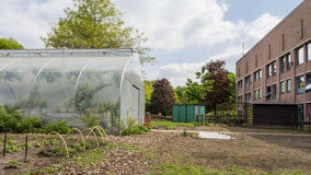 Urban agriculture Stock Photos