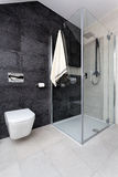 Urban apartment - wc and shower Royalty Free Stock Image