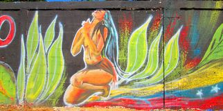 Urban Art . native girl. Photo of a mural painted on a wall . Cumana , Venezuela , South America. Shows the figure of a native woman from south america , flower royalty free stock photography