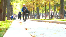 Urban autumn park stock footage