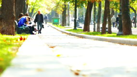 Urban autumn park. With holidaymakers people on nature tilt shift stock footage