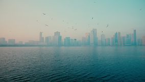 Urban background, morning cityscape with skyscrapers, blue sky reflecting in blue sea and big metropolis. Outdoors panning shot stock footage