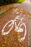 Urban bicycle track in autumn Stock Images
