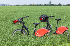 Urban Bicycles in a Green Field Royalty Free Stock Image