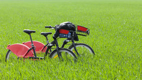 Urban Bicycles in a Green Field Royalty Free Stock Photos