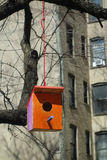 Urban Birdhouse Stock Images