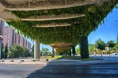 Urban bridge with ivy Stock Image