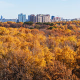 Urban buildings on autumn forest edge Stock Photography