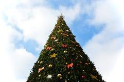 Urban Christmas tree Stock Image