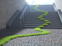 Urban ecology concept. Grass strop over stairs Royalty Free Stock Photography