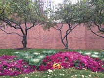 Urban Fall Scene. This is a picture of a Fall/Halloween display on Lake Shore Drive in Chicago, Illinois. This picture was taken on October 31, 2014 Royalty Free Stock Photo
