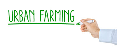 Urban Farming Stock Photography